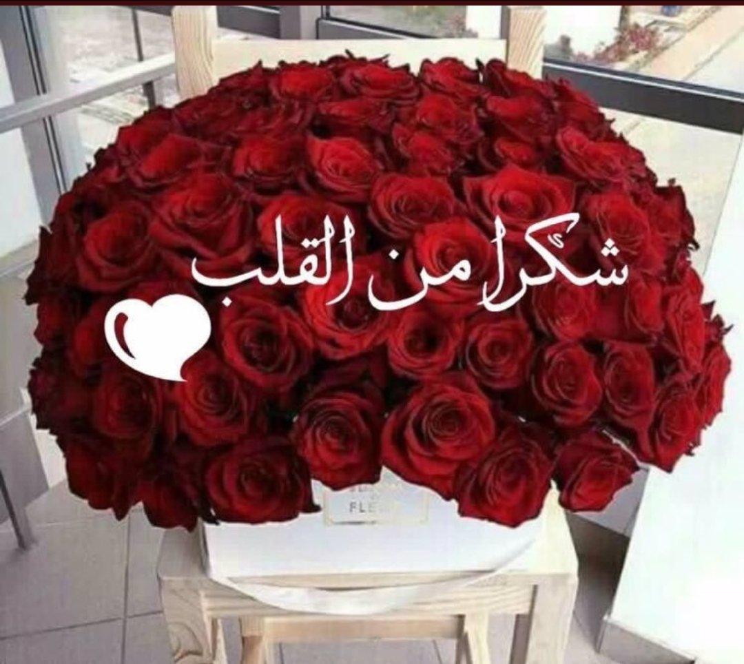 صور شكرا على الاضافه رمزيات امتنان قبول الاضافه مساء الورد