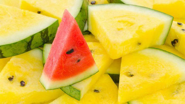 صورة بطيخ اصفر , فوائد لا نعرفها عن البطيخ الاصفر