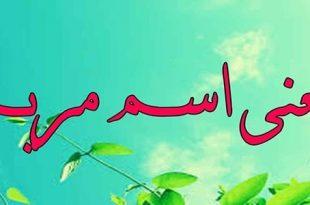صورة ما معنى اسم مريم , اسماء دينينة من القران
