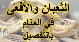 صورة خطورة الثعبان بالمنام , تفسير حلم الثعابين في البيت