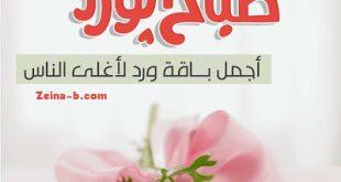 صورة صباح العسل والهنا كله , صور صباح للحبيب