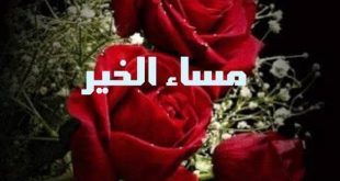 صورة مساء الفل علي قلبك اللي زي الفل , صور مساء الخير