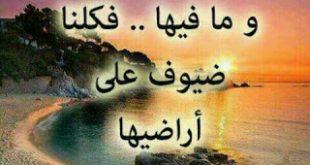 صورة اصبر عشان ربنا يجازيك خير عن صبرك , حكم عن الصبر