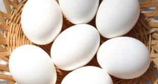 صورة حلمت اني باكل بيض , تفسير رؤية البيض في المنام للمتزوجة