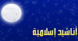 صورة اغاني إسلامية تعبر عن جمال الدين , اغانى دينية مصرية