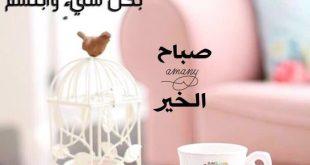 صورة فرح قلب حبايبك بهذه الصور , كلمات الصباح والتفاؤل 6107 12 310x165