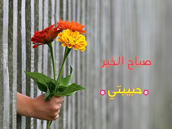 صورة شعر صباح الخير حبيبتي 5661 2